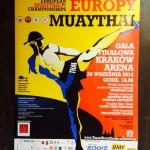 Чемпионат Европы 2014: результаты 26 сентября