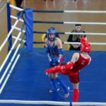 В Новочебоксарске проходят поединки за путевку на чемпионат России по тайскому боксу