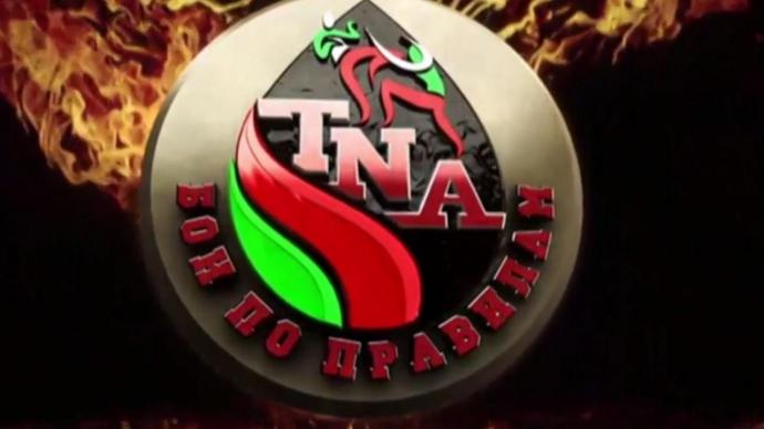 Чемпионат мира «Бои по правилам TNA» 1/2 сезон 2016/2017